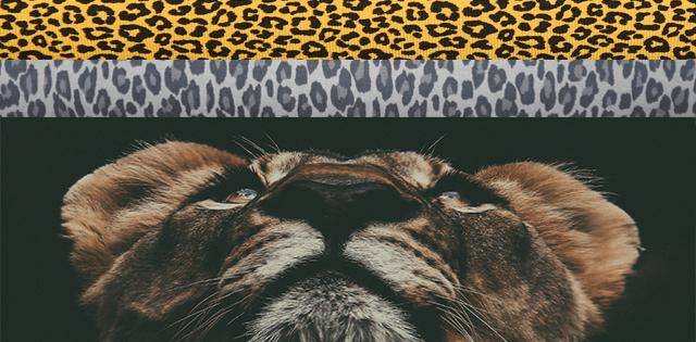 Panther prints
