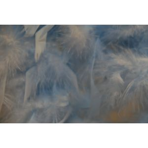 Boa 2 meters feathers Light blue