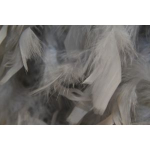 Boa 2 meters feathers grey