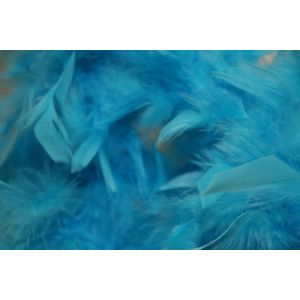 Boa 2 meters feathers Turquoise
