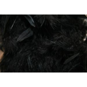 Boa 2 meters feathers black