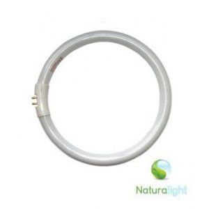 Daylight 22W naturalight Ronde TL Buis