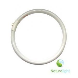 Daylight 28W naturalight Ronde TL Buis